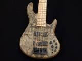 ディバイザー モモセ momose fodera Crews ken smith alembic mtd dsc