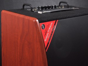 u28579 Phil Jones Bass Session 77 Cherry