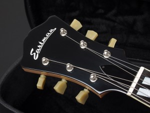 イーストマン フルアコ セミアコ Ibanez アイバニーズ godin 5th avenue アヴェニュー ゴダンfull acoustic aco semi ES-175 Gibson AR-403CE AR-175CE AR-175CE/D P-90 Ply-wood series プライウッド シリーズ ES-135 ブロンド BLD natural ナチュラル L-4