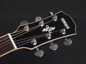 FG FS 初心者 入門向け 入門 ビギナー 女性 女子 子供 エレアコ フォーク ギター アコースティック ブラック Black 黒 ebony 小型 小ぶり CPX600 APX600 700II