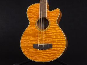 ゼン エレアコ ベース アコースティック アコベ aria FEB-FL F AB-295 fender kingman bass フレットレス fretless acoustic bass
