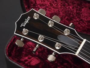 タイラー T5z Custom Classic standard godin duet steel multiac ゴダン acoustasonic MIYABI アコースタソニック Fender