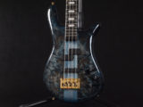 BanG Dream! RAISE A SUILEN Darkglass Custom Blue Bartolini warwick streamer スペクター スタインバーガー NS Design Limited LTD