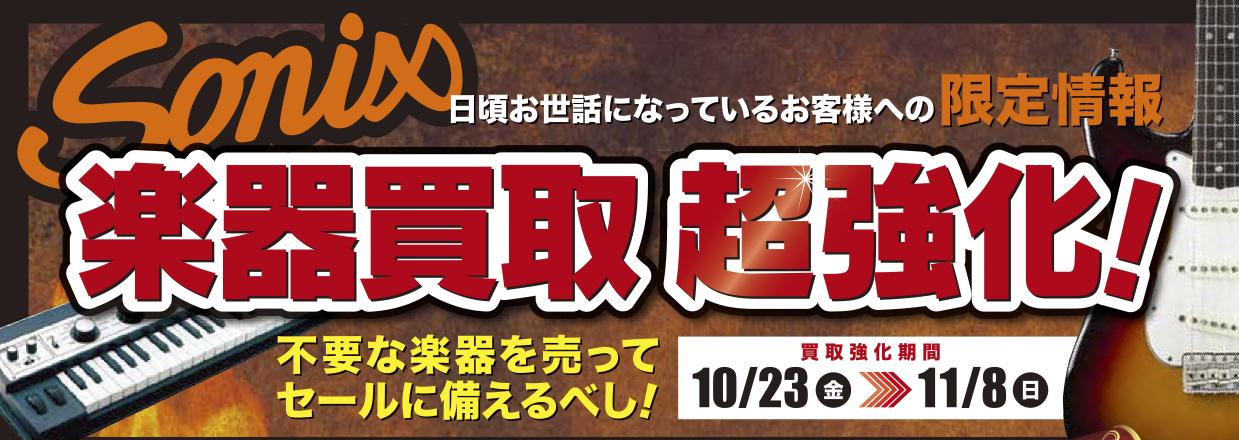 浜松 ソニックス