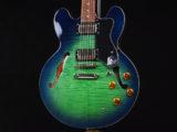 Limited Edition ES-335 Pro LTD アクアマリン iguana Blue Green Burst Sheraton Riviera ドット セミアコ AQM AM アクア