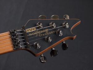 ヴァンヘイレン エディ Edward Van Halen Eddie PEAVEY Musicman Axis 5150 Friedman Brown ウルフギャング Kramer クレーマー ボコテ